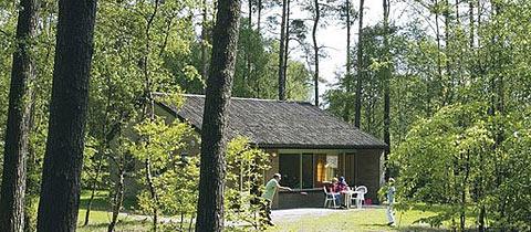 Impressie van deze 6-persoons bungalow op Landal Coldenhove