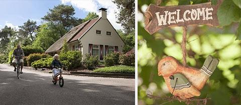 Impressie van Landgoed 't Wildryck in Diever, Drenthe