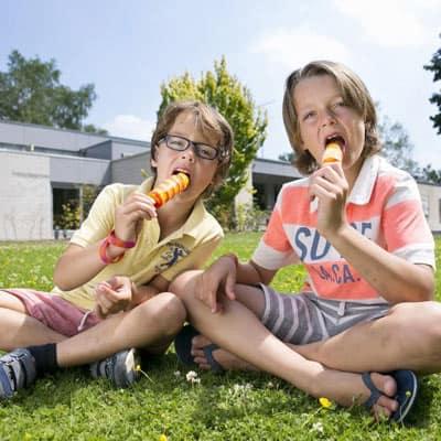 Bungalowpark Hoenderloo - Hoenderloo, Gelderland