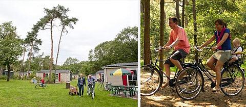 Impressie van Bospark De Bikkels in Vlierden, Noord-Brabant
