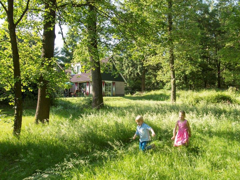 Foto van een accommodatie in het bos op Landal Coldenhove