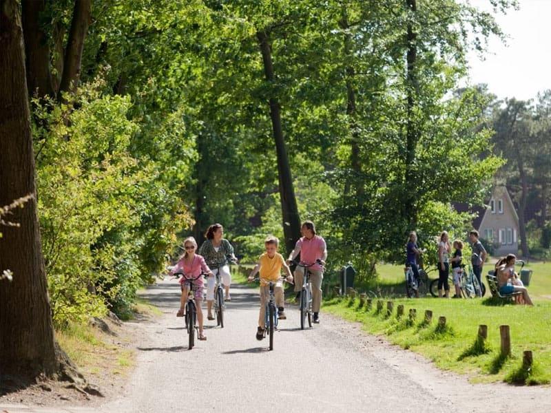 Ontdek de omgeving van Landal Landgoed 't Loo op de fiets