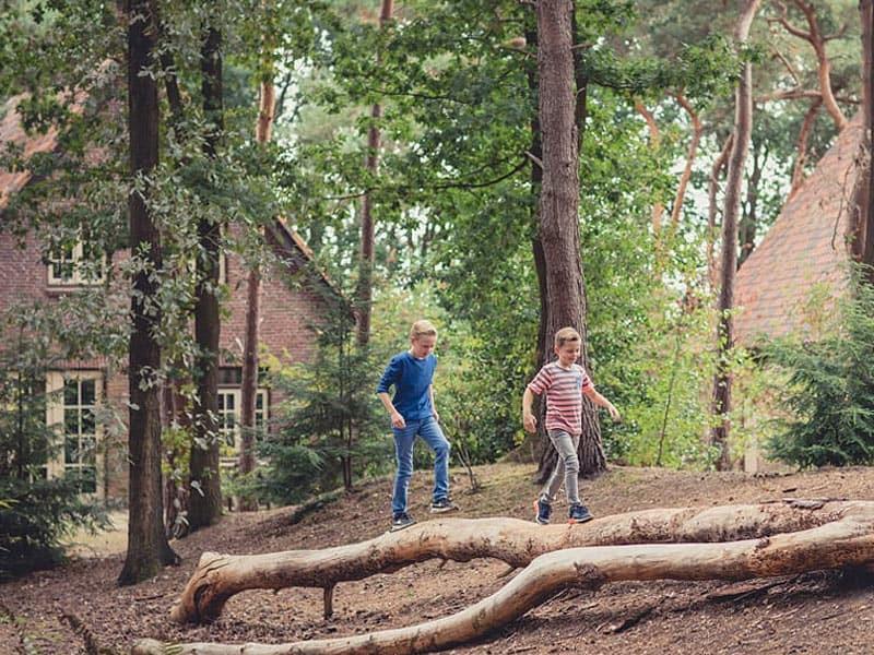 Vakantiehuisjes midden in het bos