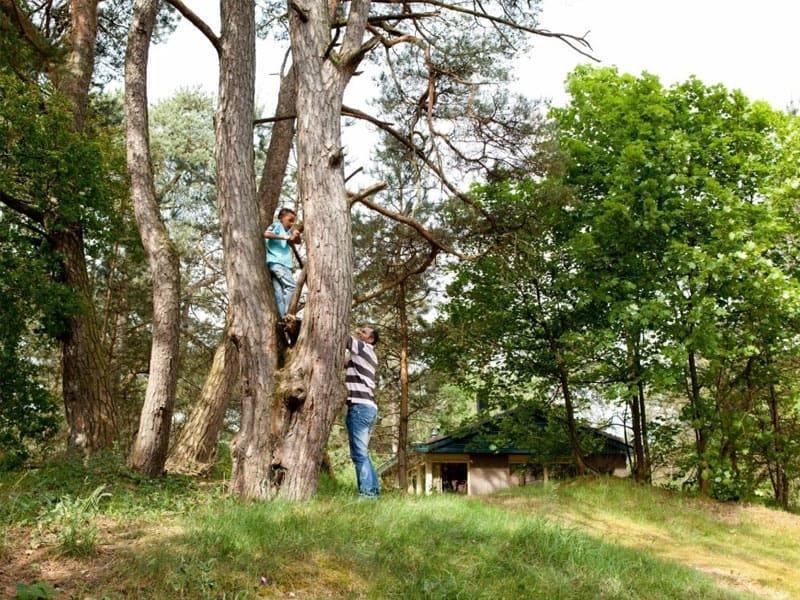 Accommodaties in het bos op Landal Coldenhove