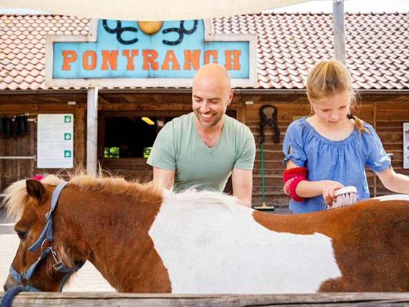 Ponyranch op Landal het Land van Bartje